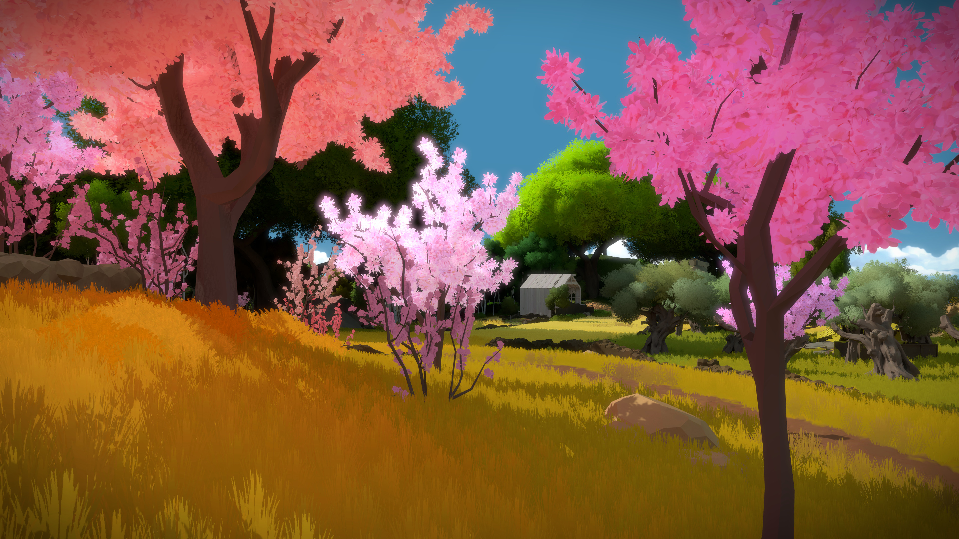 The Witness Riven 1